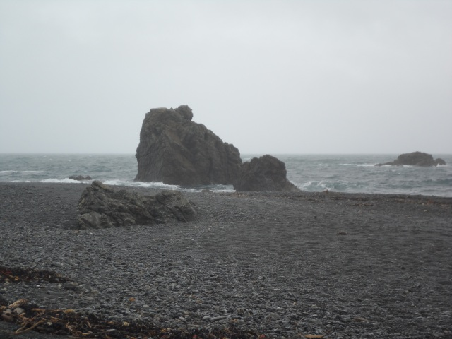 The beach at Pencarrow head. In the rain.
