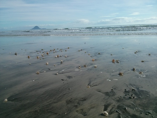 Low tide at Ohope Beach